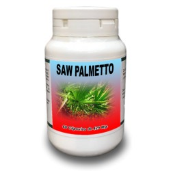 Saw Palmetto (Palmito Enano)