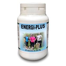Energi-Plus