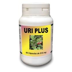 Uri Plus